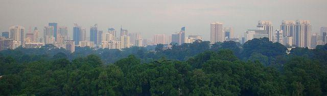 D'Leedon City View